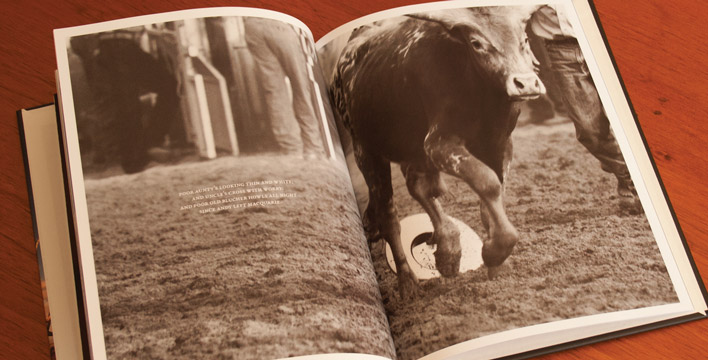 A double page spread featuring a sepia photograph of a young bull walking over an akubra in the dust.